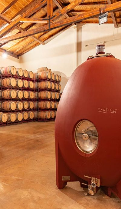 elaboracion-vino-ecologico