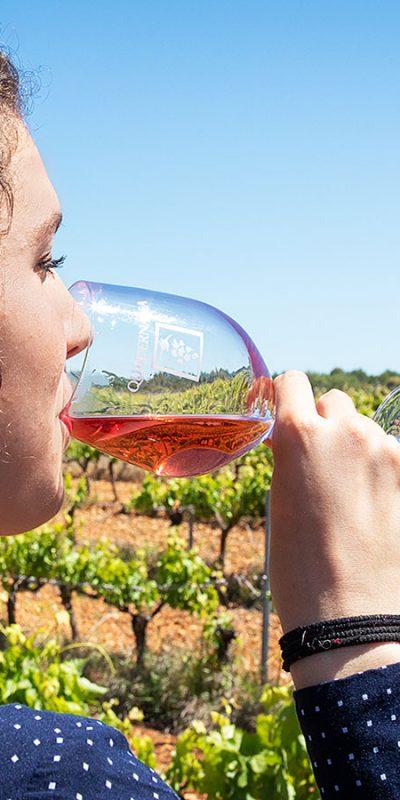 fabricacion-de-vino-ecologico-navarra